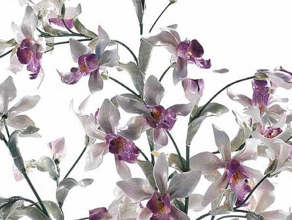 Цветы LORENZON (F.LLI LORENZON) FV.910